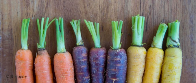 cropped-multi-coloured-carrots-purple-carrots-yellow-carrots-orange-carrots-3-w.jpg
