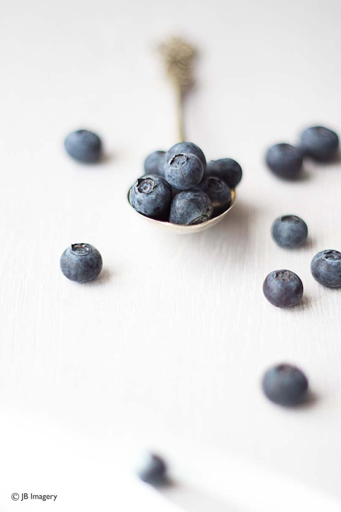 Blueberries new shoot w